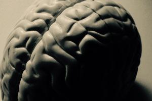 Einst war sie die Hoffnung der (Medien-)Pädagogik, heute hat die Gehirnforschung einiges an Glanz verloren